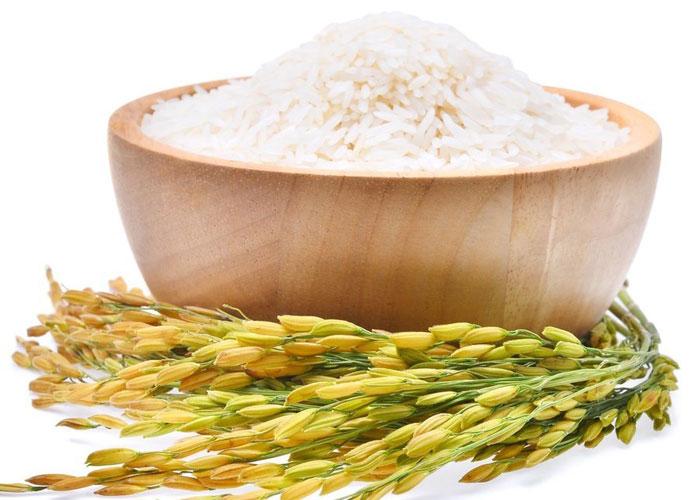 es cierto que el arroz tiene mucha azucar