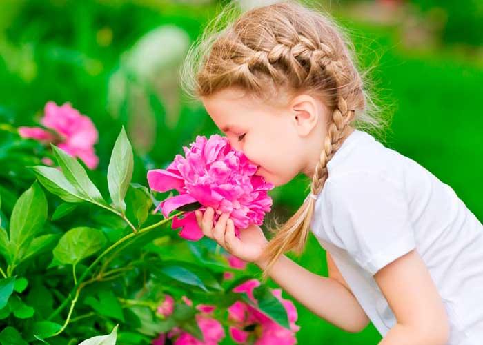 Seis cosas que no conocemos del olfato