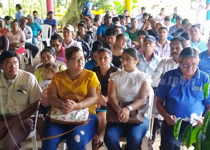 Presentan informe de avances productivos en Nueva Guinea - TN8 Nicaragua