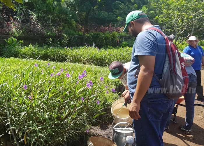 MARENA e INAFOR harán campaña ambiental para celebrar la Purísima - TN8 Nicaragua