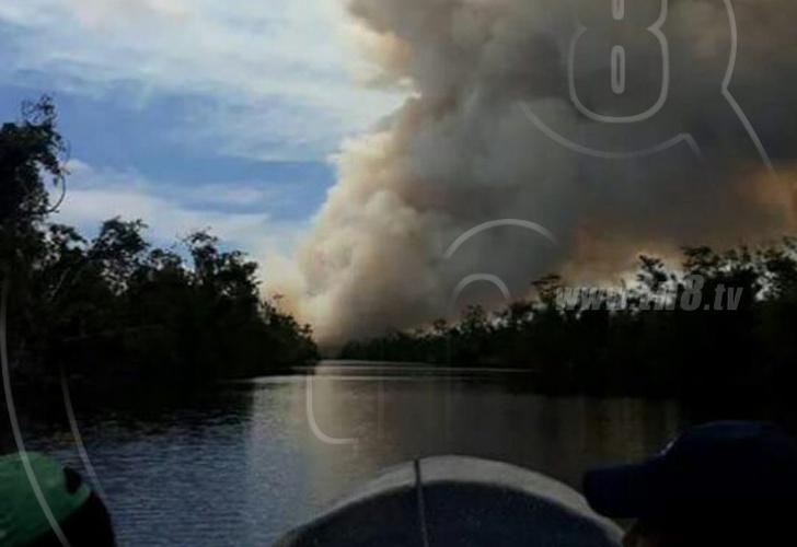 Ejército de Nicaragua frena incendio en reserva de biósfera India Maíz