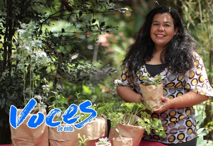 Nambume un vivero que promueve la salud y la armon a con for Plan de negocios de un vivero de plantas