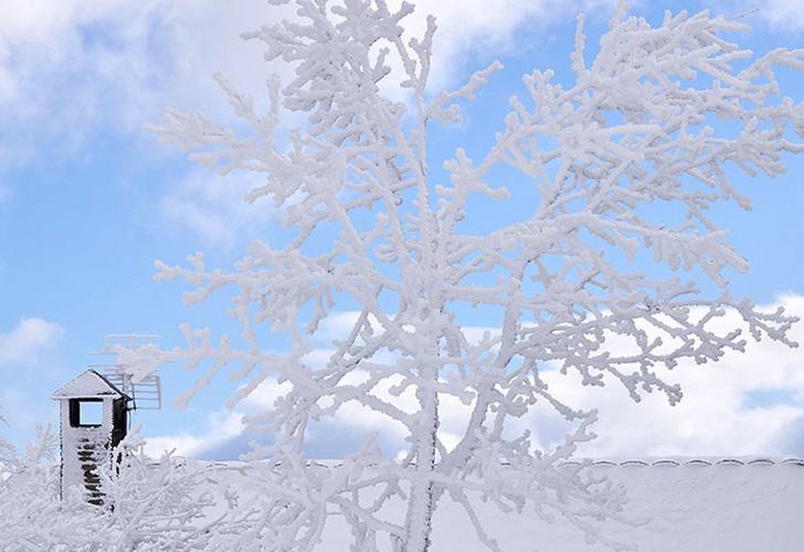 Vuelos y clases canceladas en España por copiosas nevadas