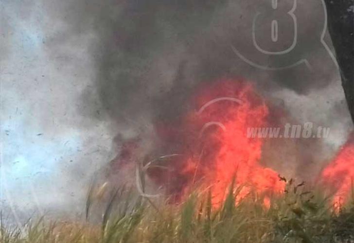 Toman medidas contra incendios forestales; van 71 por temporada de calor