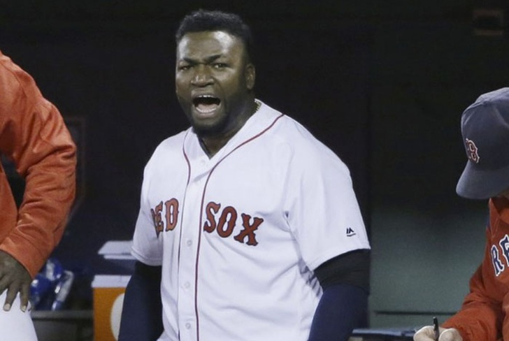 ortiz, red sox, baseball, republica dominicana, salon de la fama,