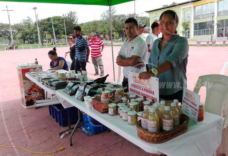 Cafe Oro Honduras Review