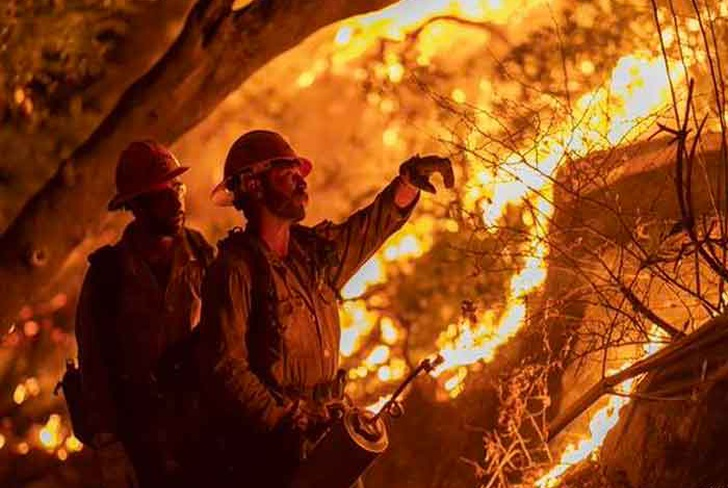 estados unidos, california, incendios forestales, incendio bobcat, catastrofes,