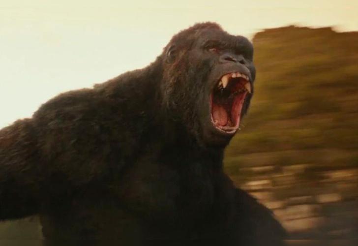 Isla Calavera' se convertirá en serie para TV — King Kong