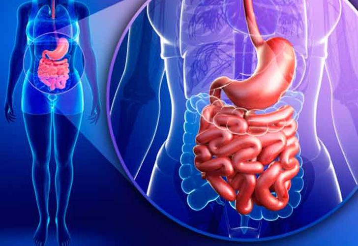 Dolor de estómago náuseas migraña