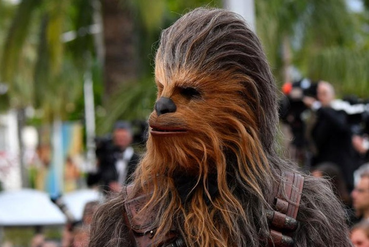 bebe, video, viral, reaccion,  chewbacca, personaje, star wars