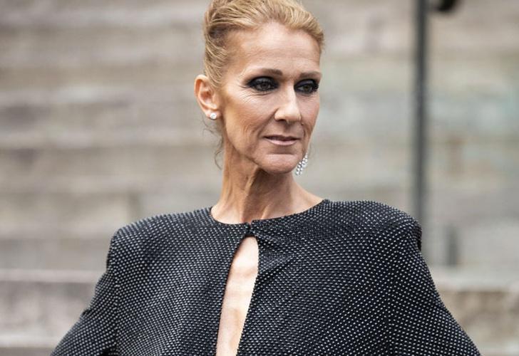 Celine Dion causa furor en Paris con vestido 3D