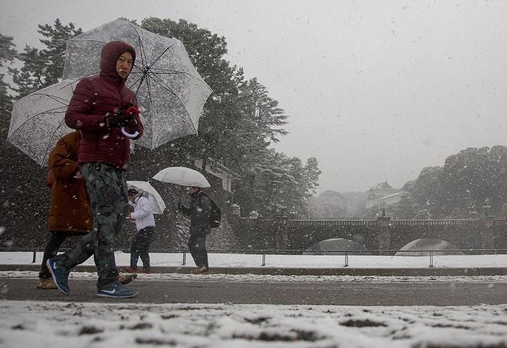 La mayor nevada en los últimos cuatro años, en fotos — Tokio
