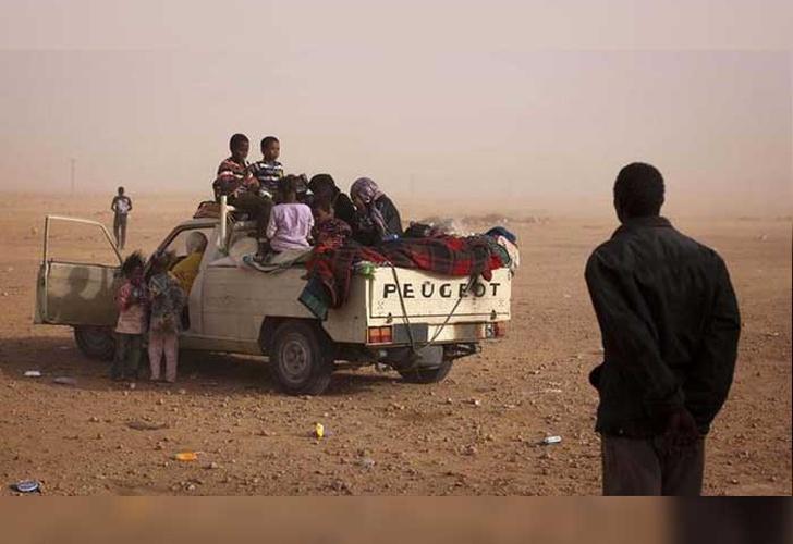 Hallaron 44 migrantes muertos en el desierto: entre ellos varios bebés
