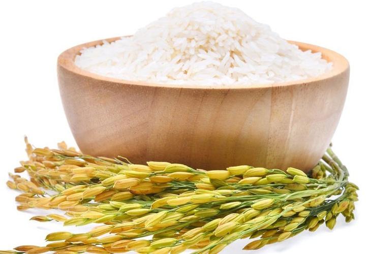 el arroz es proteina o carbohidrato