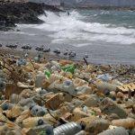 plasticos degradables