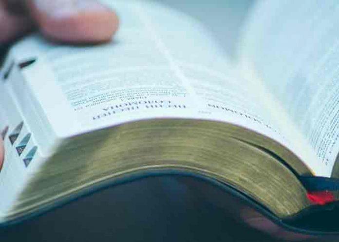 estados unidos, bebe, dieta biblica, homicidio,