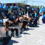 nicaragua, canina, curso, cinofila, policia,