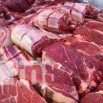 nicaragua, exportacion, carne bovina, centroamerica,