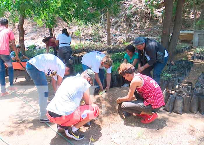 nicaragua, managua, jóvenes, plantas, tierra