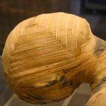 polonia, ciencia, momia, arqueologia,