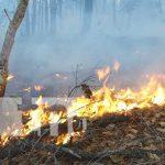 nicaragua, incendio, esteli, prevencion, forestal,