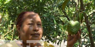 nicaragua, leon, patio saludable, economia familiar,