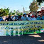nicaragua, tipitapa, ciclo agrícola, productores,