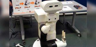 robot semihumanoide