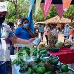 nicaragua, masaya, carnaval, cosechas, instituciones,