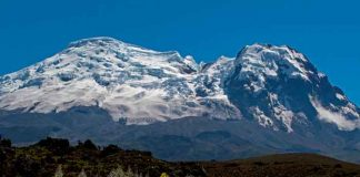 ciencia, descubrimiento, algas, nuevas especies, glaciares