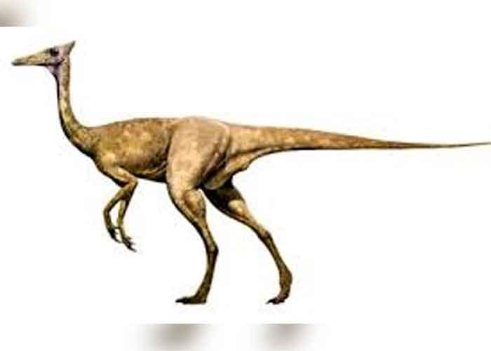ciencia, dinosaurio, españa, estudio, hallazgo