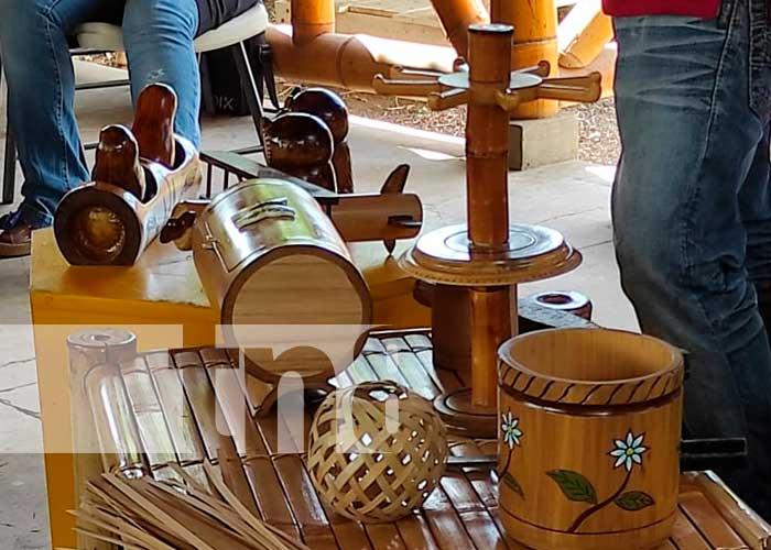 Crecimiento, taller, bambú, Nicaragua,