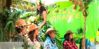nicaragua, Ticuantepe, ciclo agrícola, productores,