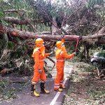 india, evacuacion, personas, ciclon, tauktae, autoridades,