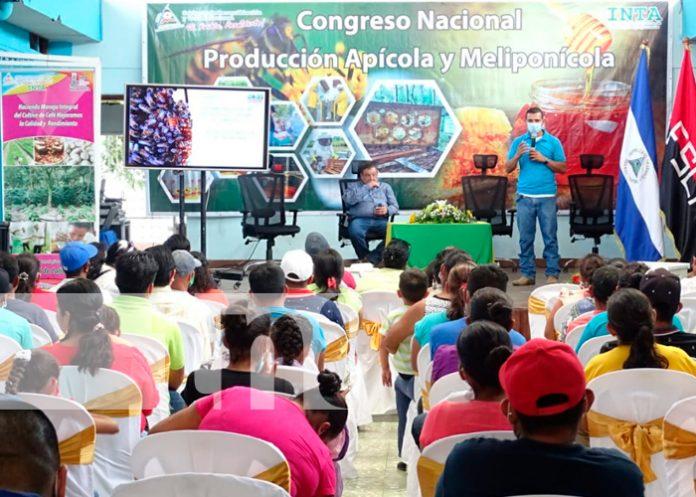 produccion apicola, nicaragua, inta, exportaciones,
