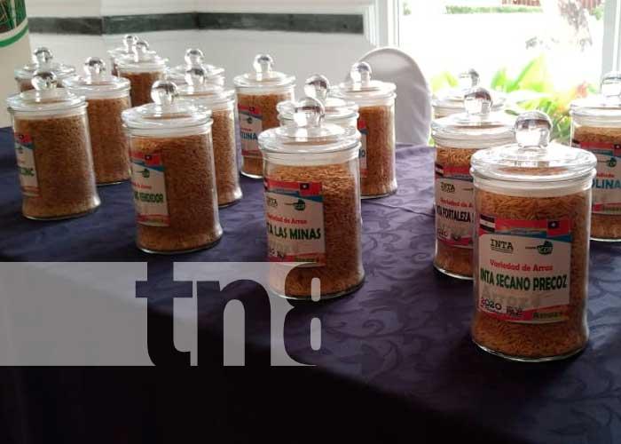 nicaragua, inta, calidad de cultivos, taiwan,