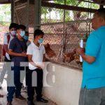 Nicaragua, juigalpa, estudiantes, técnicas especializadas en reproducción animal