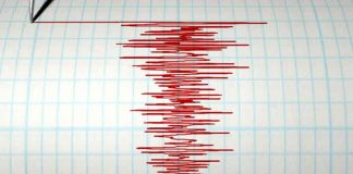 sumatra, terremoto, registro, fenomeno natural, informacion, autoridades,