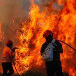 grecia, incendio forestal, bomberos, emergencia,