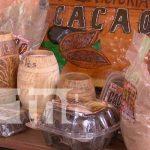 nicaragua, cacao, semilla, produccion, economia,