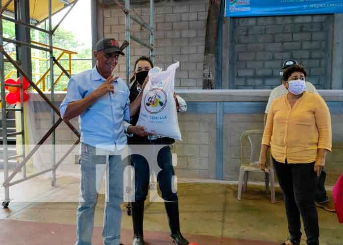 nicaragua, la Libertad, productores, semillas de frijol,