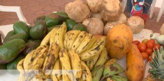 managua, cosechas, feria, nicaragua,