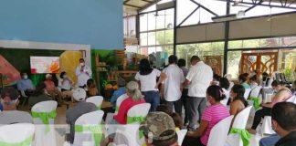 nicaragua, frutas, consumo, plan nacional,