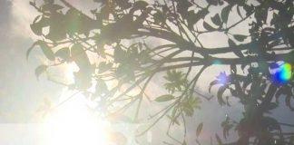 nicaragua, calor, ineter, clima, pronostico,