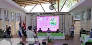 nicaragua, managua, urbanizacion, trabajo ambiental, alcaldia,