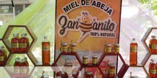 nicaragua, miel, apicultura, reunion, marena, miel,