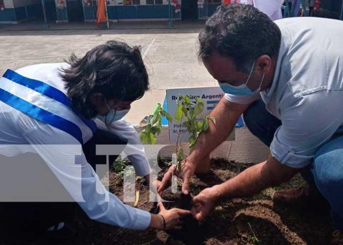 nicaragua, managua, reforestacion, plantas, colegio republica de argentina,