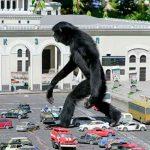 Rusia, Internautas, King Kong, vida real,