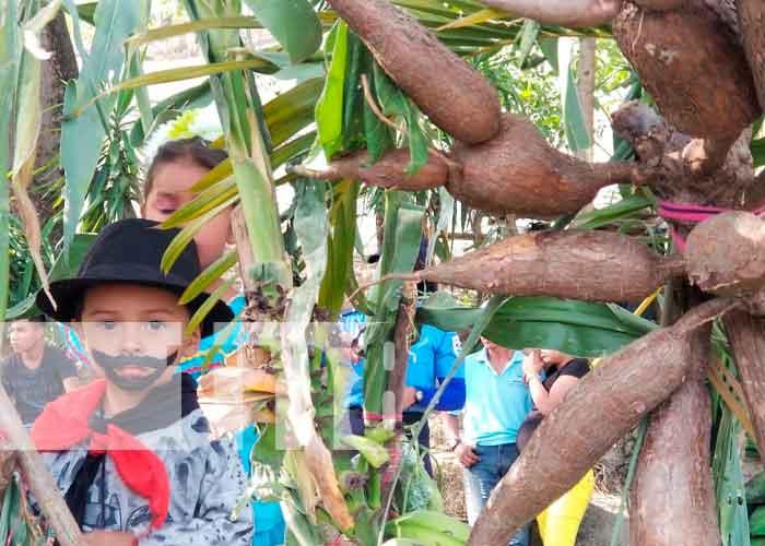 nicaragua, nueva segovia, ciclo agrícola 2021, productores,