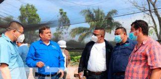 Nicaragua, Siuna, trámites para la exportación , empresas,